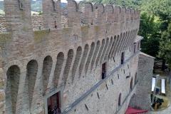 I merli di Palazzo Conti Oliva